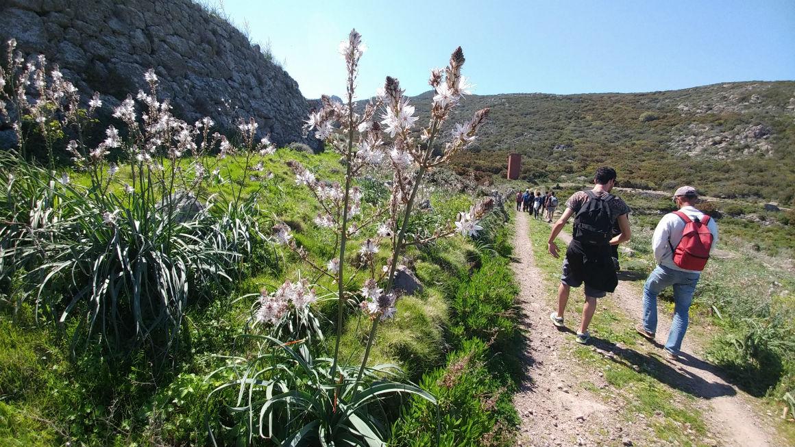 trekking in Capraia sentiero del Dattero primo maggio